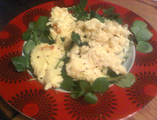 Scrambled eggs on a bed of watercress